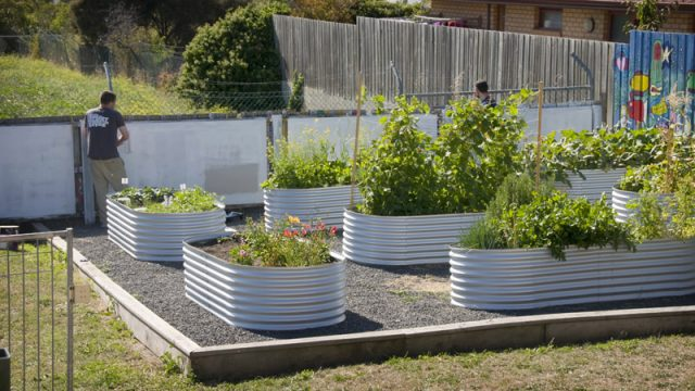 _Live-Healthy-Gardening3