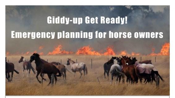 tfs bushfire emergency planning guidelines